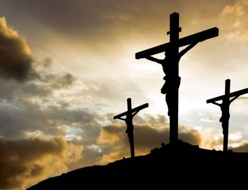 Meditations on the Cross: What is the Purpose of Suffering?